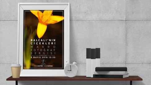 Altınoran Düşünce ve Sanat Platformu - Poster-Afiş