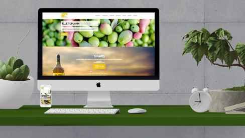 Olea Cilicia - Web Sitesi