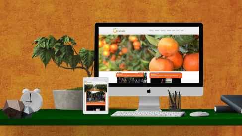 SATEKİN - Web Sitesi